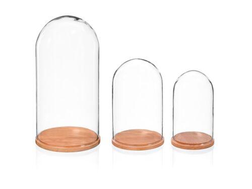 Support Verre de protection écran Dôme cloche avec naturel hêtre base hauteur 31 cm
