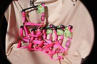 5 Pack Bmb Premium Horse Size Triple Ply Halter With Brass Hardware Pink Hot