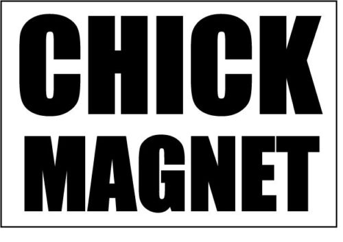 Chick magnet relationships humour themed vinyl sticker 21cm x 11cm