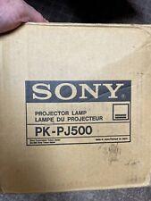 New Original Sony Pk Pj500 Projector Bulb Amp Housing