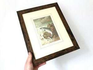 Antique-039-A-Salmon-Leap-039-Print-Professionally-Framed-PJ-Smit