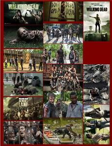 THE WALKING DEAD 15 PHOTO FRIDGE MAGNETS