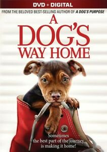 a-Dog-039-s-Way-Home-2019-PG-Family-Adventure-Movie-DVD-Ashley-Judd-DISC-ONLY