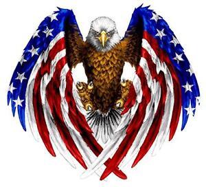 Autocollant-sticker-voiture-moto-aigle-usa-drapeau-etats-unis-amerique-biker