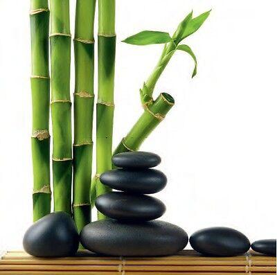 Design Team: Lucky Bamboo Deco-Glas-Bild 30x30 Eurographics Feng Shui Zen