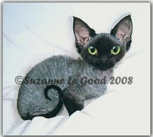 LIMITED-EDITION-DEVON-REX-CAT-PRINT-FROM-ORIGINAL-PAINTING-BY-SUZANNE-LE-GOOD