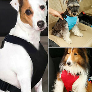 Adjustable Restraint Lead Pet Dog Puppy Cat Safety Seat Belt Car Harness Collar