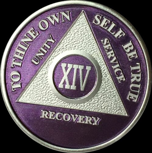 Custom Color Year 1-65 Silver Plated AA Medallion Sobriety Chip Coin Token