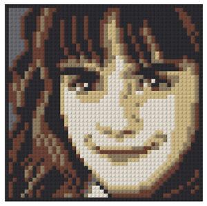 Hermione Granger Brick Mosaic