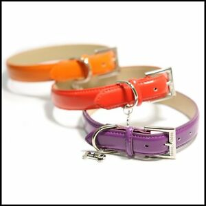 LUXURY-PATENT-LEATHER-DOG-COLLAR-3-colours-to-choose-from-RED-ORANGE-PURPLE