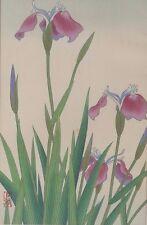 Fine Japan Japanese Floral Botanical Woodblock Print ca. 20th century