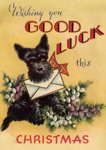 Scottish terrier good luck scottie dog single dog print greeting image is loading scottish terrier good luck scottie dog single dog m4hsunfo