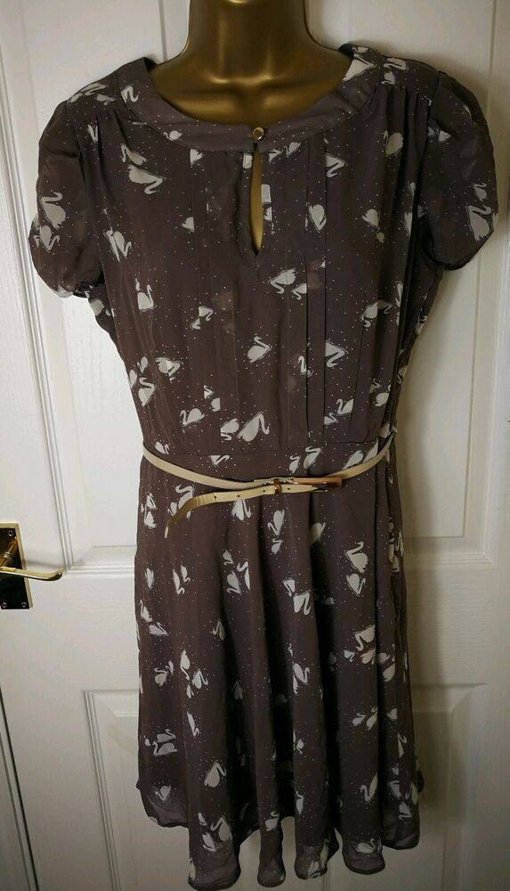 Nouveau Dorothy Perkins Femme Midi Robe Taille 12 Manches Courtes Moulante Patineuse Ll