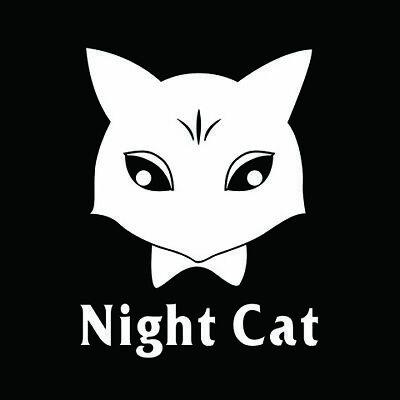 Best Night Cat