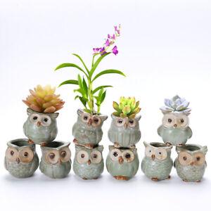 5pcs-Mini-Ceramic-Flower-Pot-Owl-Shape-Succulent-Plant-Container-Garden-Decor