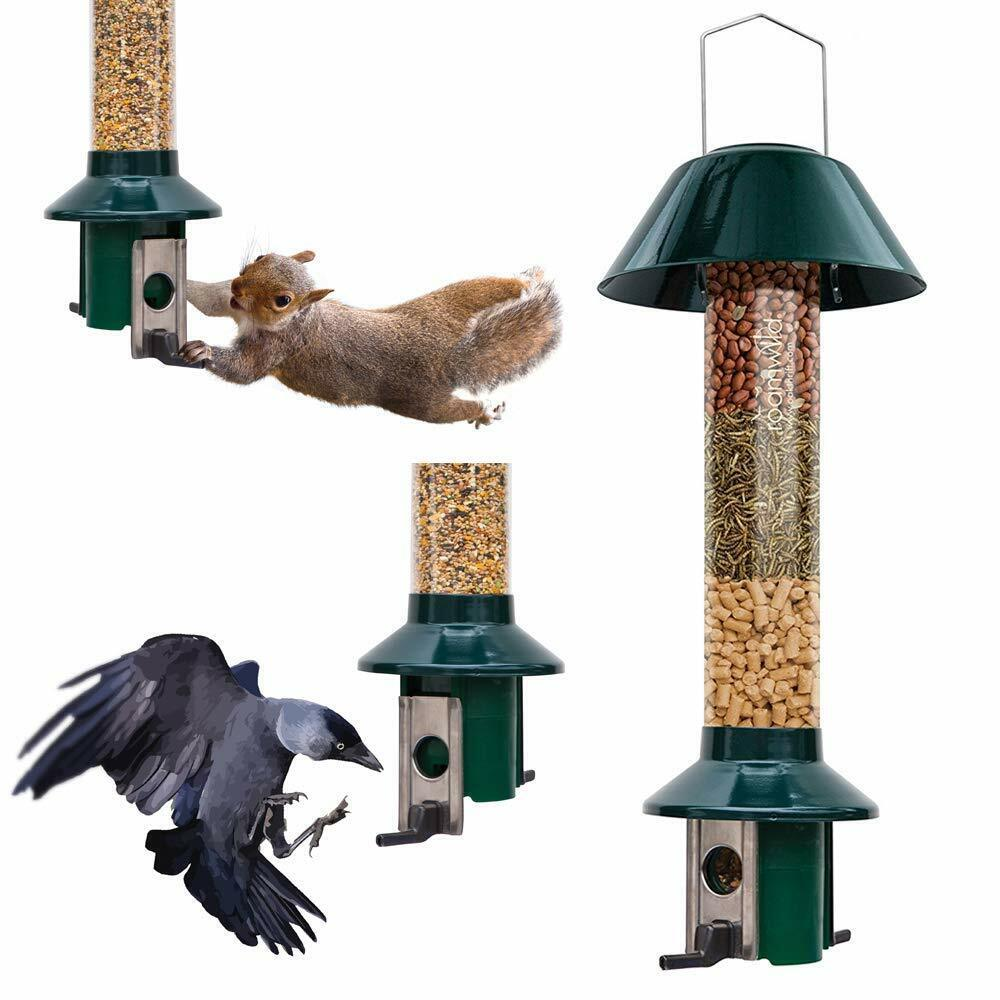 Squirrel Proof Bird feeder Dried Mealworm Peanut Rat & Large Bird Proof PestOff