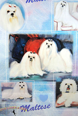Maltese Dog Gift Present Wrap