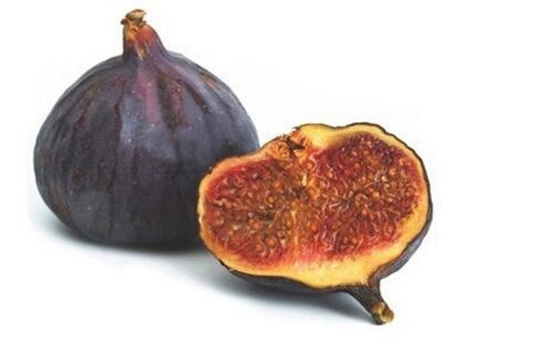 Fig black Seeds Ukraine 10 seeds S0757 Gardener/'s dream