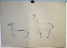 GAZELLES page with drawings from the album of Russian artist A.M.Gromov