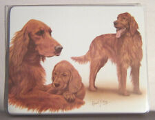 Retired Dog Breed IRISH SETTER FAMILY Vinyl Softcover Address Book by Robert May