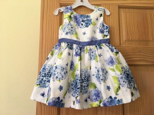 NWT Gymboree Floral Duppioni Dress Toddler Girls Easter Wedding Outlet Blue