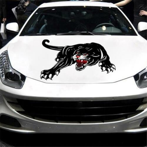 Angry Tiger Claw Car Hood Door Body Sticker Styling Decor Graphic Decal DD