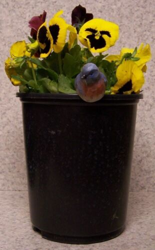 Flower Pot Hugger Bird #7 NEW colored polystone