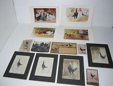 SUPER Collection Lot - Bantam Chicken Breeder 1905 Photos Prints & Advertising