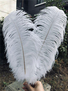 10-500pcs High Quality Natural Ostrich Feathers 6-24 inch Wedding Art Decorate