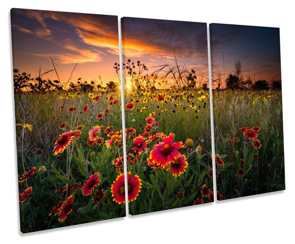 SUNSET WILD floreale fiori triplicare CANVAS Wall Art Box incorniciato stampa