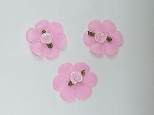 10 Beautifl Satin Rose Rosebuds Sur Un Pressé Base Avec 6 Pétales-afficher Le Titre D'origine 5k5q3z2r-10105607-165195421