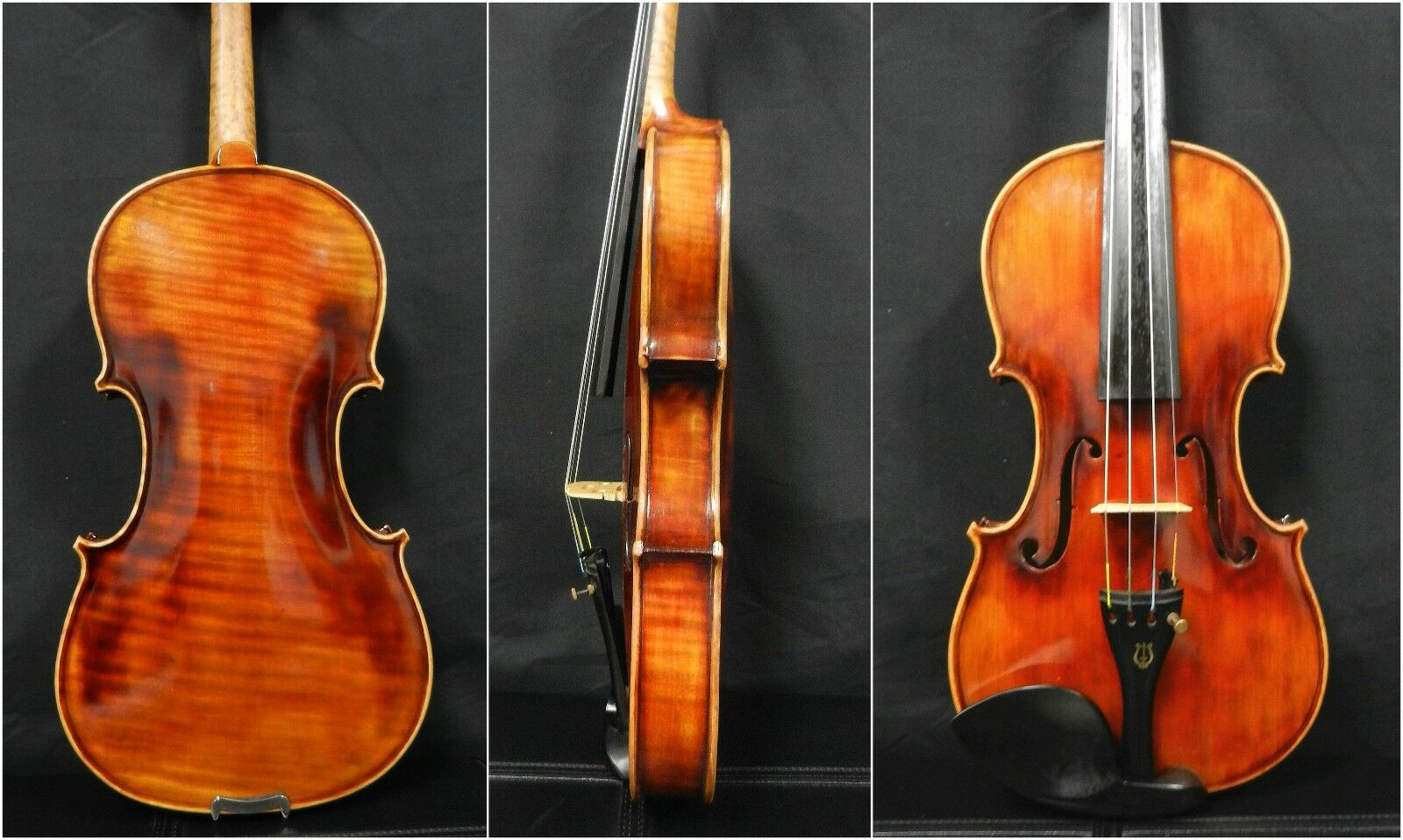 Fine Professional Violin 4 4 Full Größe,Dominant Strings ,One Piece Back