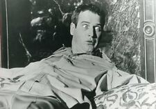 PAUL NEWMAN  THE SECRET WAR OF HARRY FRIGG 1968 VINTAGE PHOTO #2