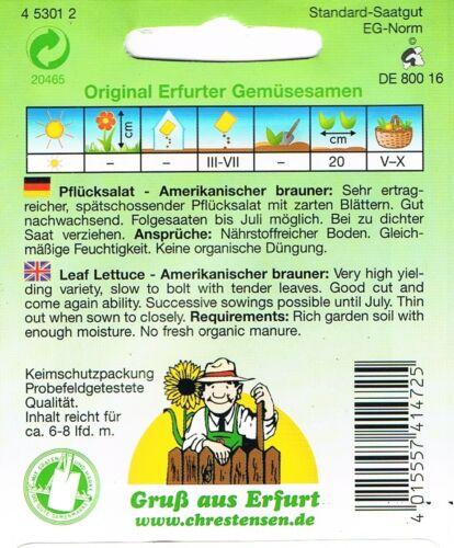 Pflücksalat /'Amerikanischer brauner/'  Salat Samen 453012