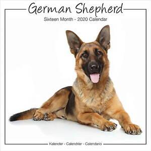 German-Shepherd-Calendar-2020-Premium-Dog-Breed-Calendars