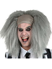 Crazy Spirit Mad Scientist Halloween Beetle Juice Fancy Dress Accessory Wig New