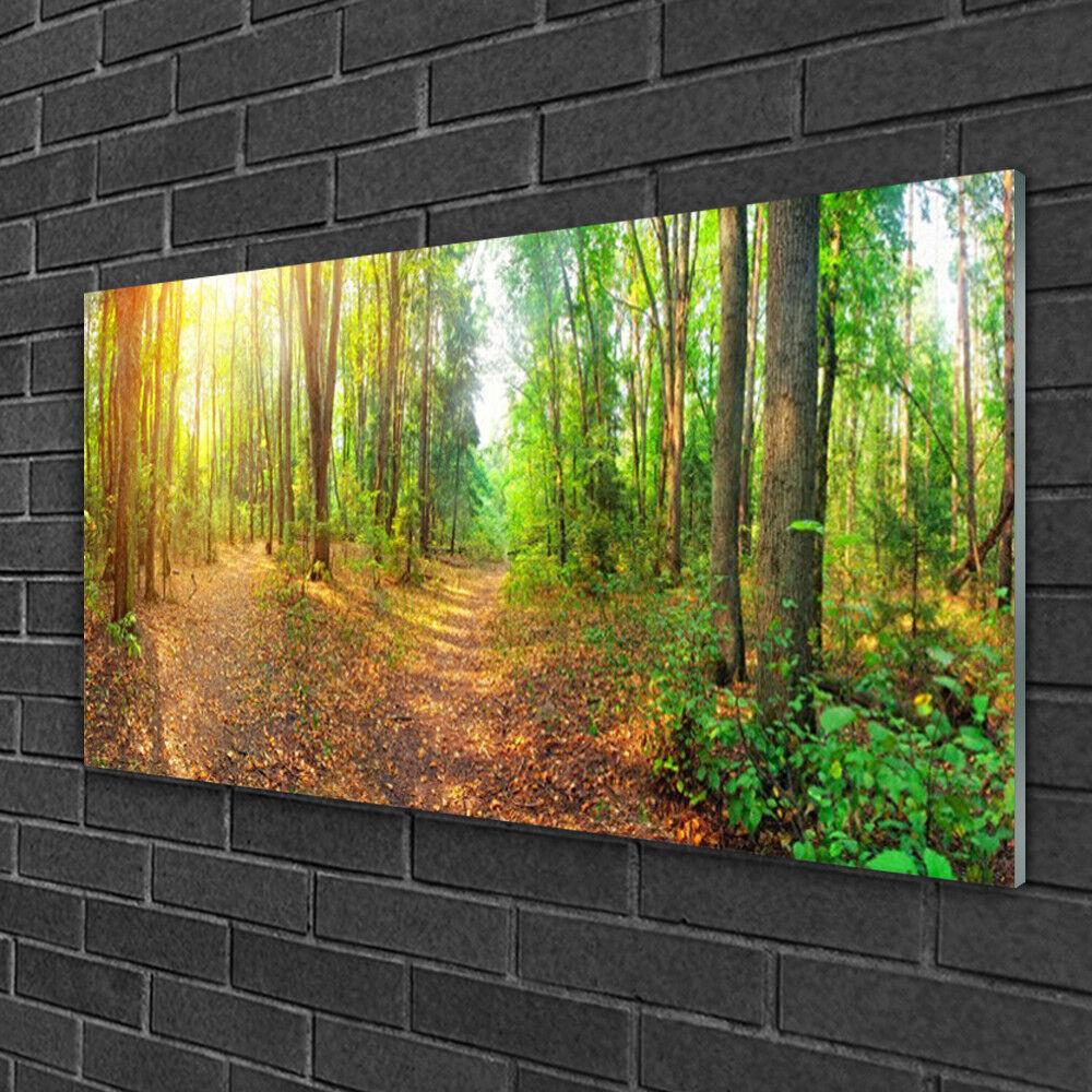 Muro immagini da plexiglas ® 100x50 VETRO ACRILICO IMMAGINE NATURA FORESTA