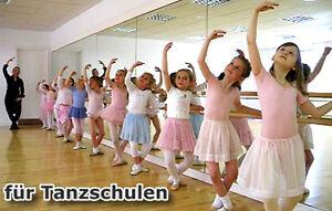 Grosse Spiegelwand Tanzspiegel Spiegel Fur Fitnessstudio Tanzstudio