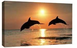 LARGE-DOLPHINS-AT-SEA-SUNSET-CANVAS-PICTURE-WALL-ART-A1-34-034-X-20-034