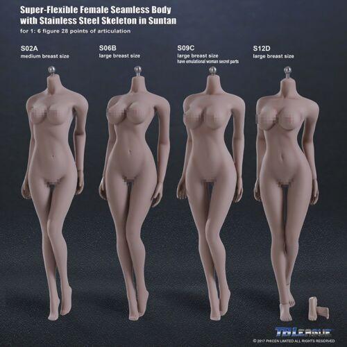 1//6 PHICEN S12D Female Seamless SUNTAN Figure Body L Bust Steel Skeleton TBL USA