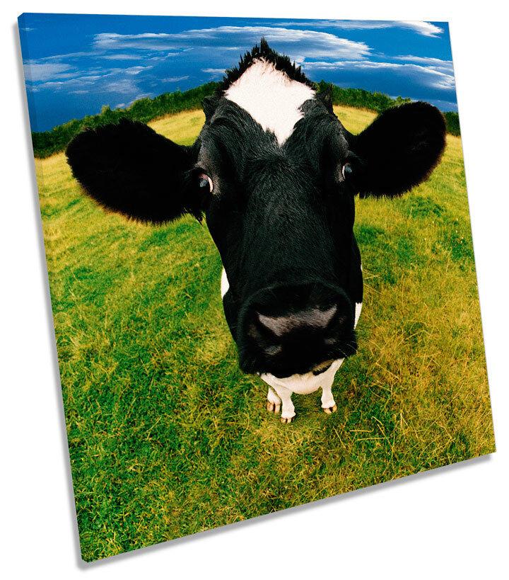 Cow Face Farm Funky SQUARE BOX FRAMED CANVAS ART Print
