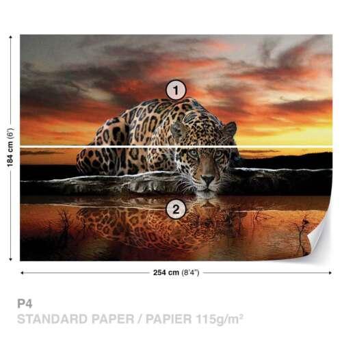 FOTOTAPETE VLIES FOTOMURAL XXL Leopard Sonnenuntergang 126WS