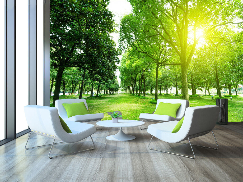 3D sunlight forest 491 wall Paper Print Decal Wall Deco Indoor wall Mural