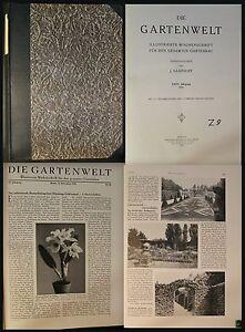Saathoff-Die-Gartenwelt-Illustrierte-Wochenschau-35-Jg-1931-Botanik-xz