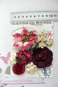 ASTER-BLOSSOM-amp-ROSE-Flowers-Paper-BURGUNDY-amp-IVORY-11-Pk-15-60mm-across-VC3