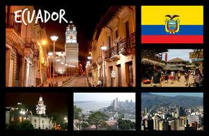 ECUADOR-South-America-Negozio-di-souvenir-novita-Magnete-del-frigorifero