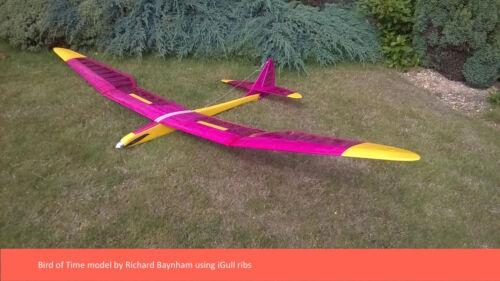 RC Modeler /'Bird de temps/' RIB sets