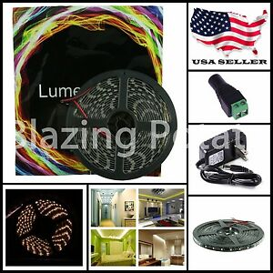 LW 5M 3528 IP65 Waterproof Flexible 300 LED Strip Lights Kit-Black PCB-WarmWhite