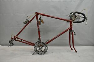 1976 Ross Europa Vintage Touring Bike Frame Set 59cm Large Lugged Steel Charity!