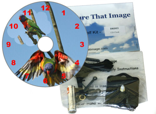 DIY CD Clock Kit of Parrots A Colourful Gift for all Bird Lovers